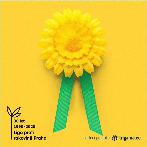 Květinový květen 2020 Liga proti rakovině DMS